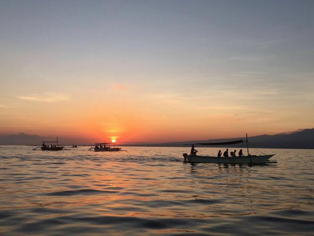 Foto: Tiket Melihat Dolphin Di Lovina Termurah