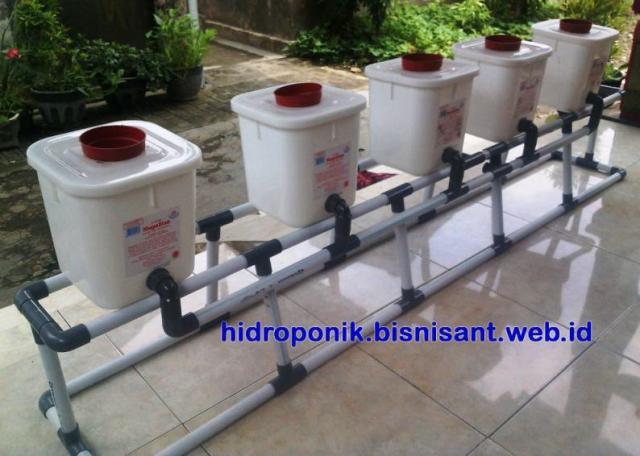Foto: Jual Paket Dutch Bucket Hidroponik Untuk Tanam Buah-buahan, Model Bongkar Pasang