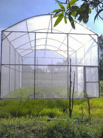 Foto: Greenhouse Developer & Farm Management System