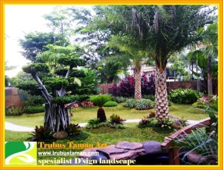 Foto: Tukang Taman,tukang Taman Jakarta